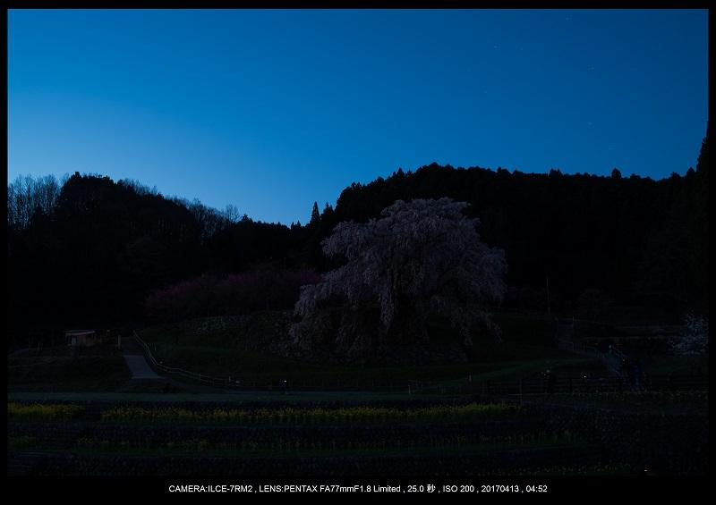 奈良宇陀市・又兵衛桜(本郷の瀧桜)夜景・星景9.jpg