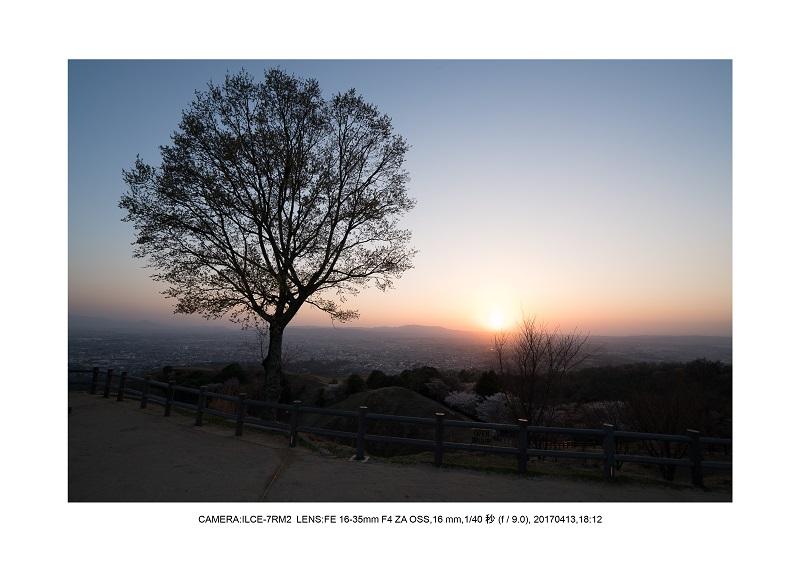 奈良絶景・若草山で鹿のシルエットと夕日夕陽17.jpg