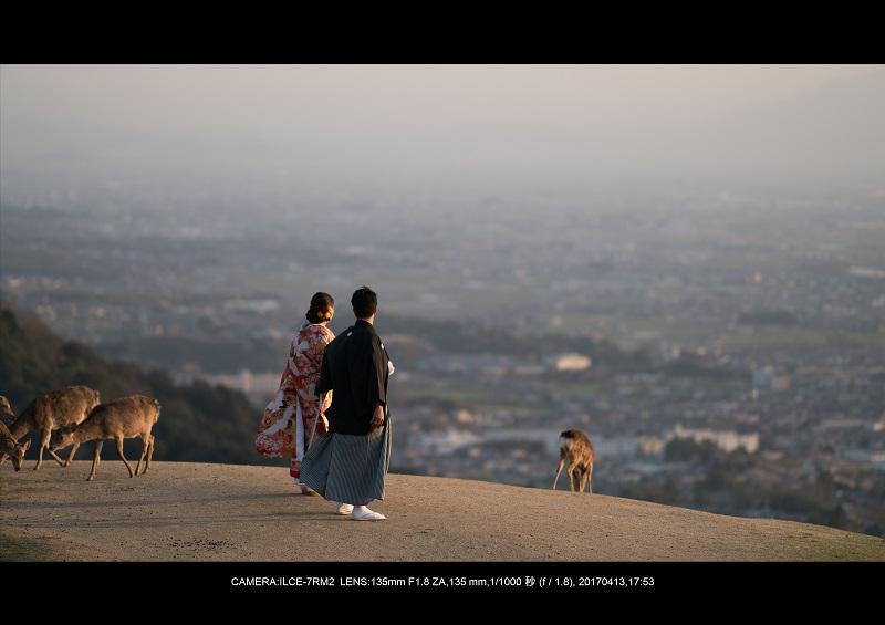 奈良絶景・若草山で鹿のシルエットと夕日夕陽6-0.jpg