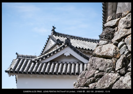 姫路城_11.jpg