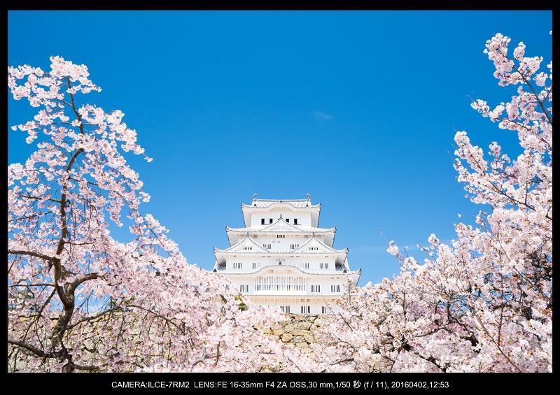 姫路城_6.jpg