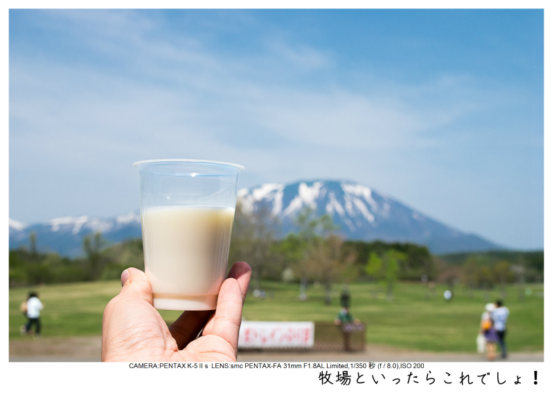 小岩井農場の一本桜13.jpg