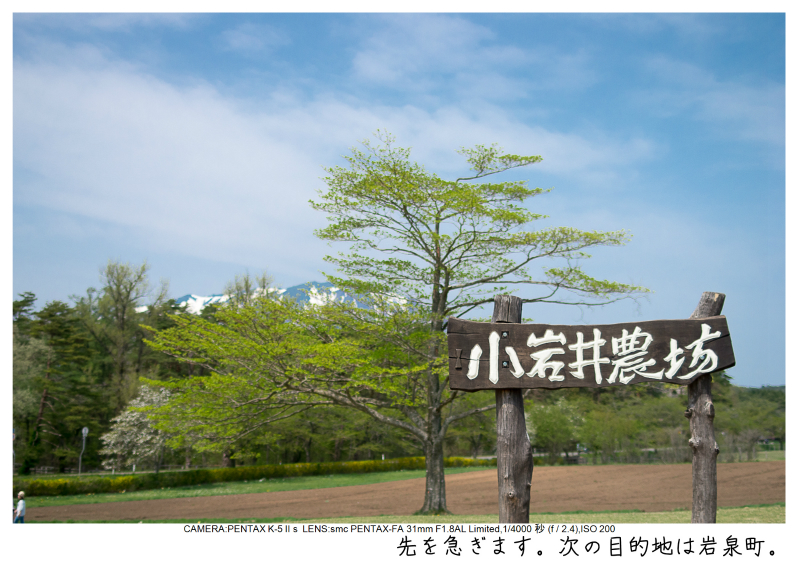 小岩井農場の一本桜21.jpg