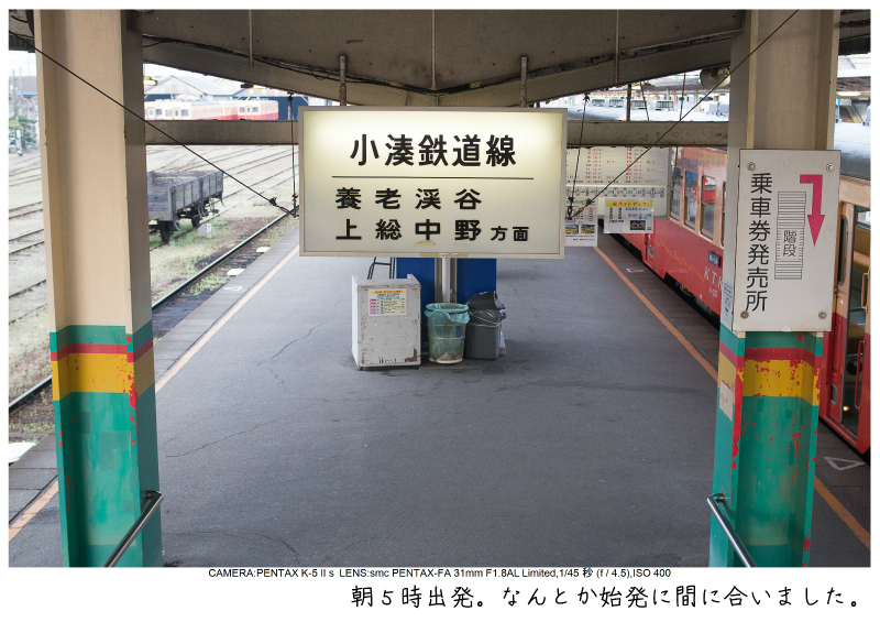 小湊鉄道_菜の花写真1.jpg