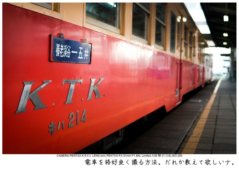 小湊鉄道_菜の花写真2.jpg