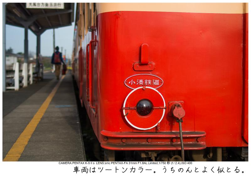 小湊鉄道_菜の花写真5.jpg