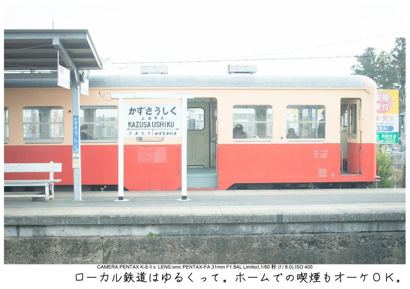 小湊鉄道_菜の花写真6.jpg