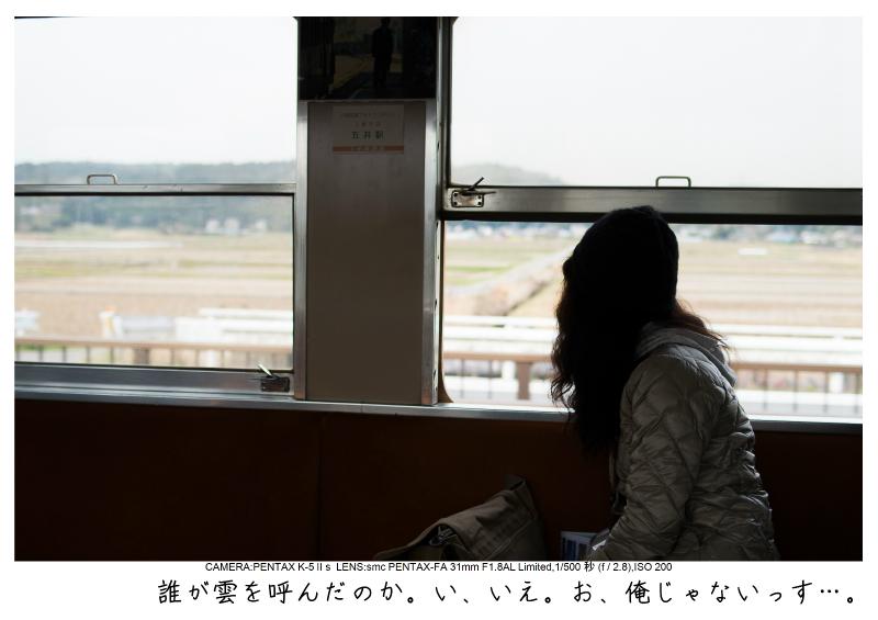 小湊鉄道_菜の花画像1.jpg