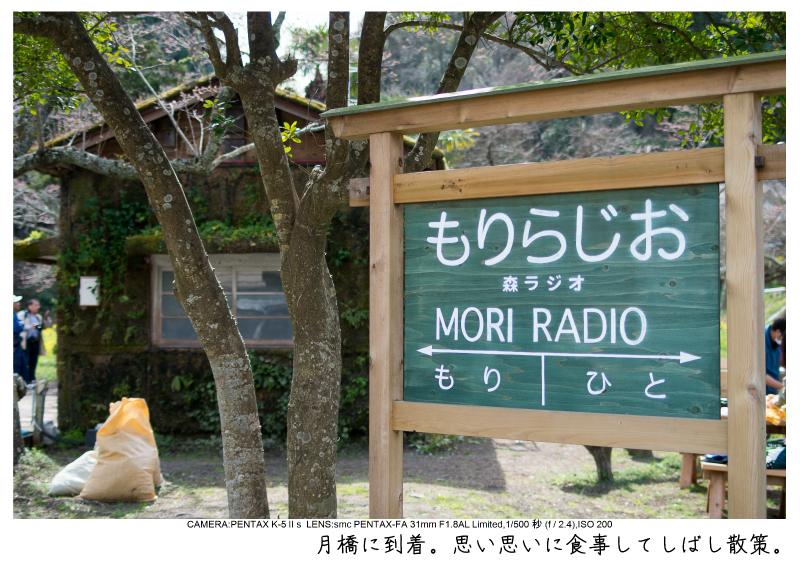 小湊鉄道_菜の花画像22-1.jpg