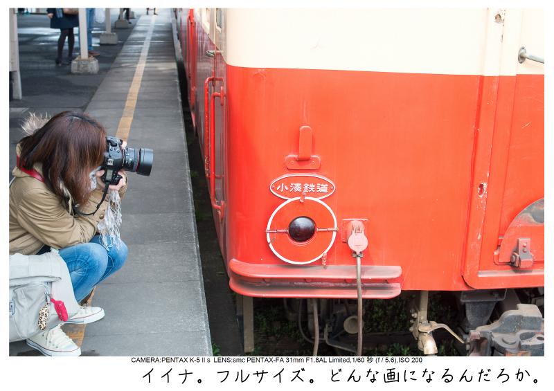 小湊鉄道_菜の花画像3.jpg