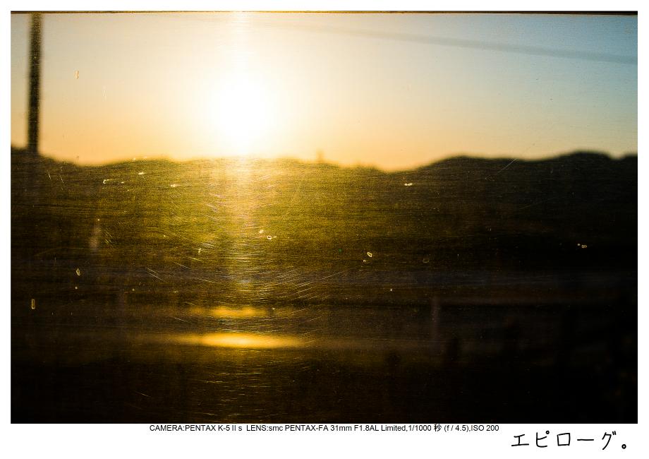 小湊鉄道_菜の花画像66.jpg