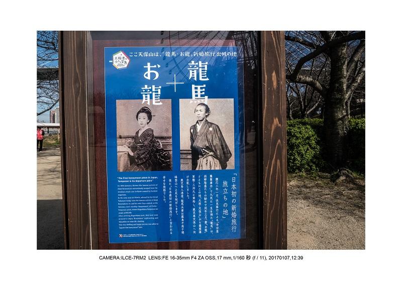建築絶景大阪湾岸ジャンクション36.jpg