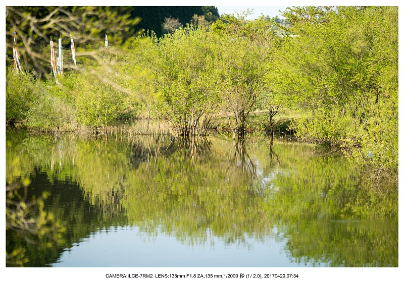 新緑の奈良・室生湖の鏡面シンメトリー24.jpg