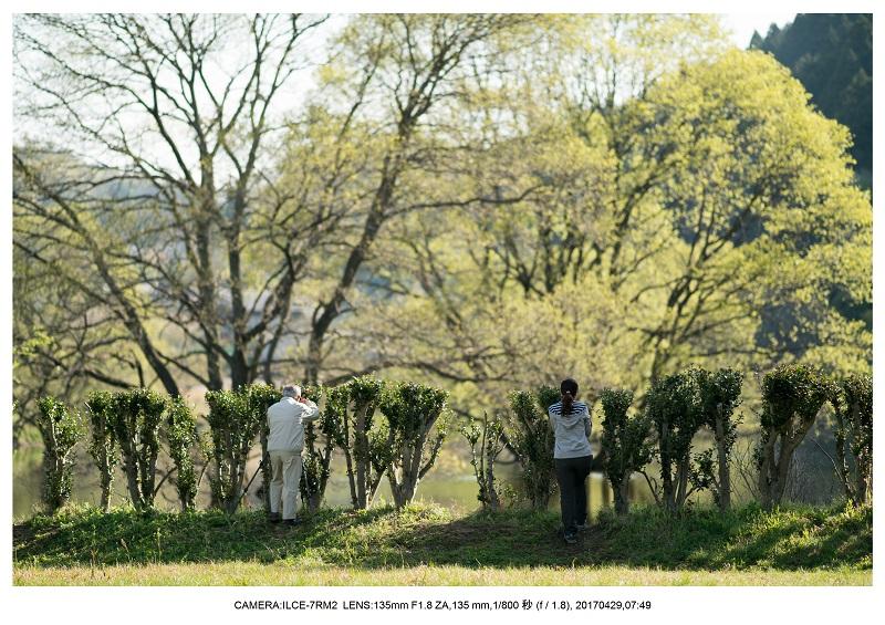 新緑の奈良・室生湖の鏡面シンメトリー30.jpg