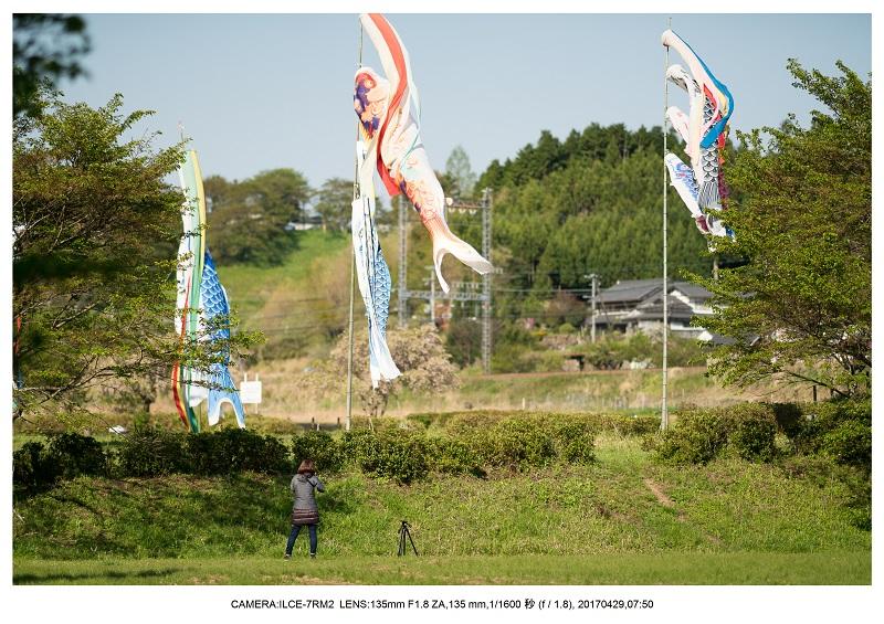 新緑の奈良・室生湖の鏡面シンメトリー31.jpg