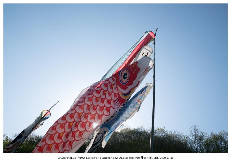 新緑の奈良・室生湖の鏡面シンメトリー32.jpg