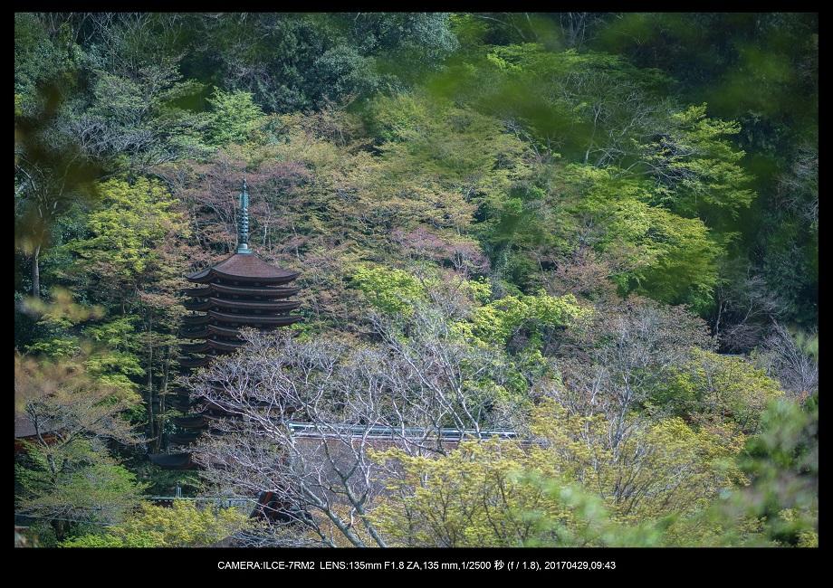 新緑の談山神社十三重の塔0-2.jpg