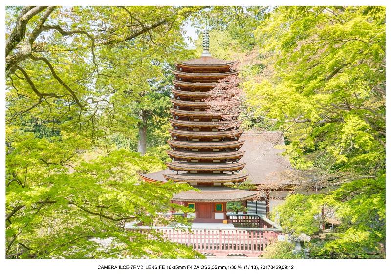 新緑の談山神社十三重の塔10.jpg