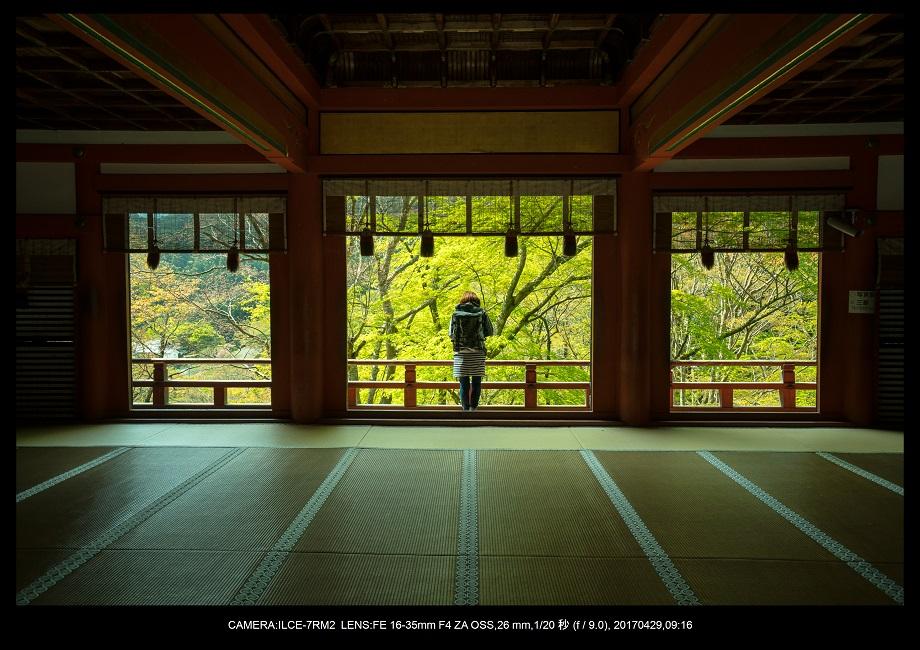 新緑の談山神社十三重の塔11-1.jpg
