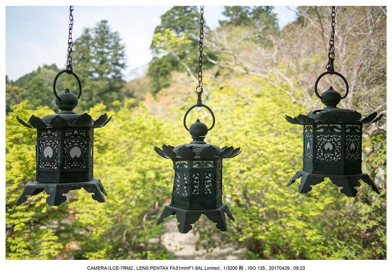 新緑の談山神社十三重の塔13.jpg