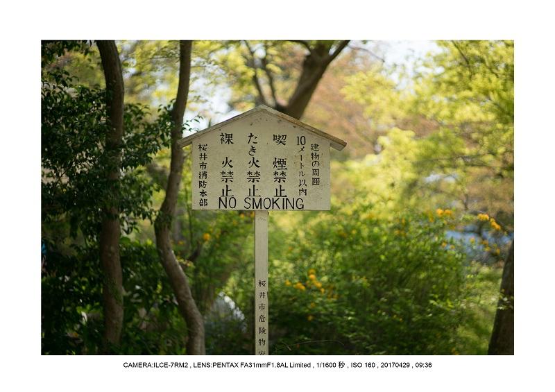 新緑の談山神社十三重の塔16.jpg