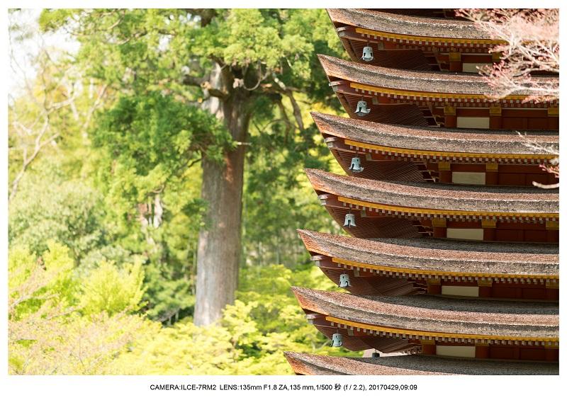 新緑の談山神社十三重の塔8.jpg