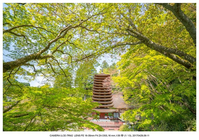 新緑の談山神社十三重の塔9.jpg