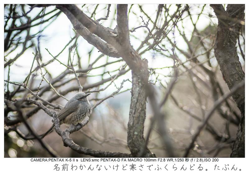 木場公園2.jpg