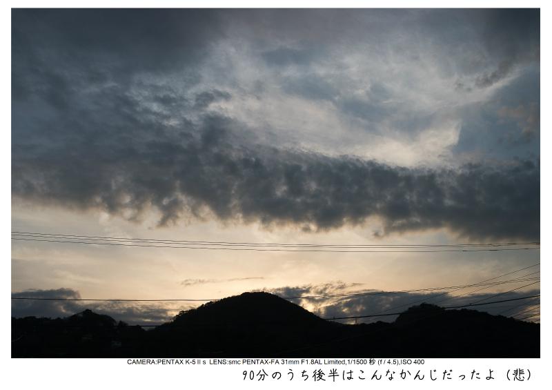 河津町の河津桜25.jpg