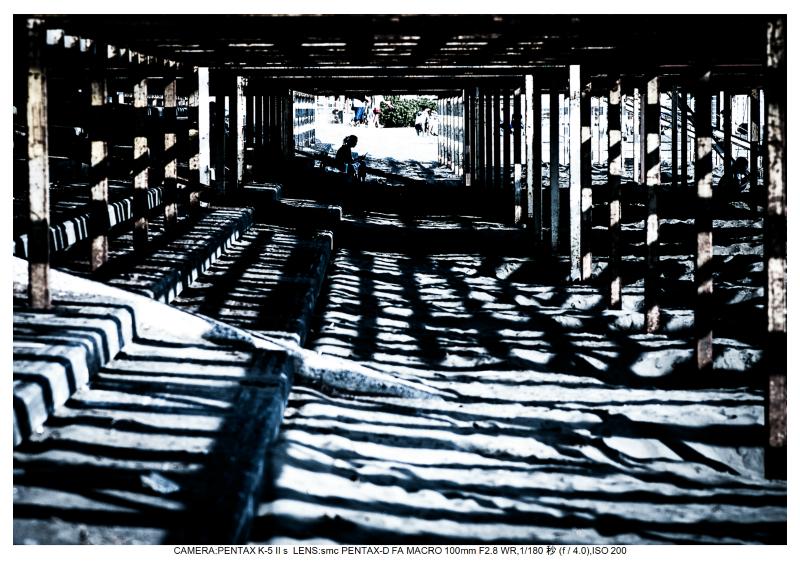 湘南散歩109.jpg