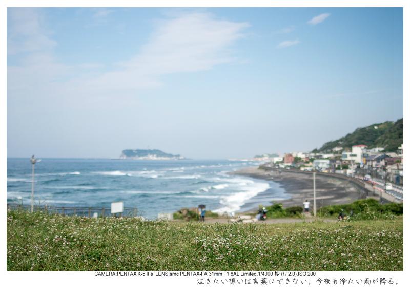 湘南散歩12.jpg