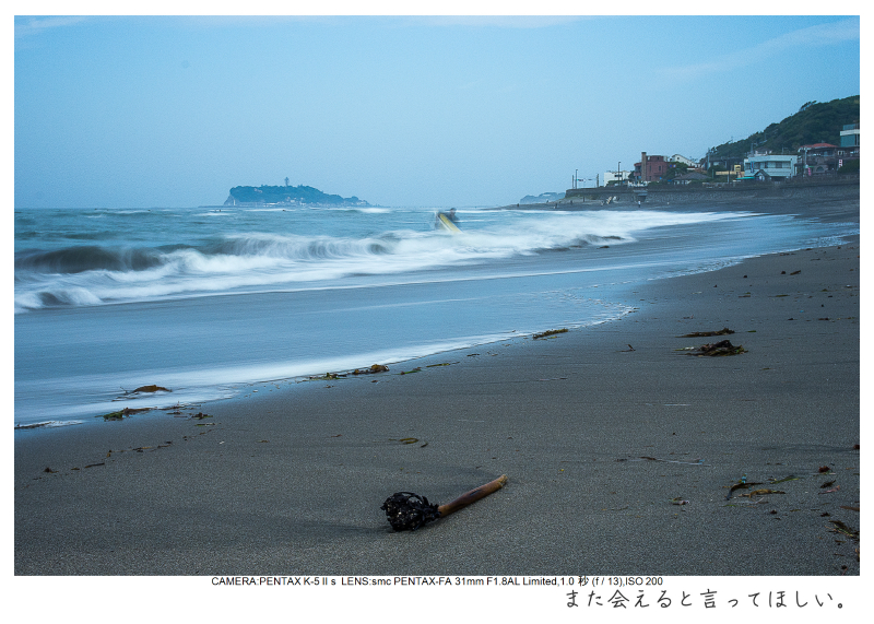 湘南散歩18.jpg
