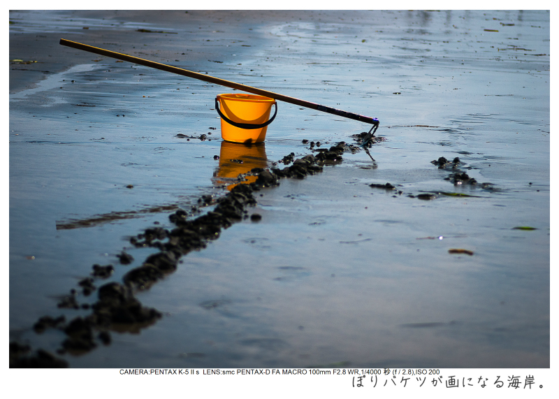 湘南散歩34.jpg