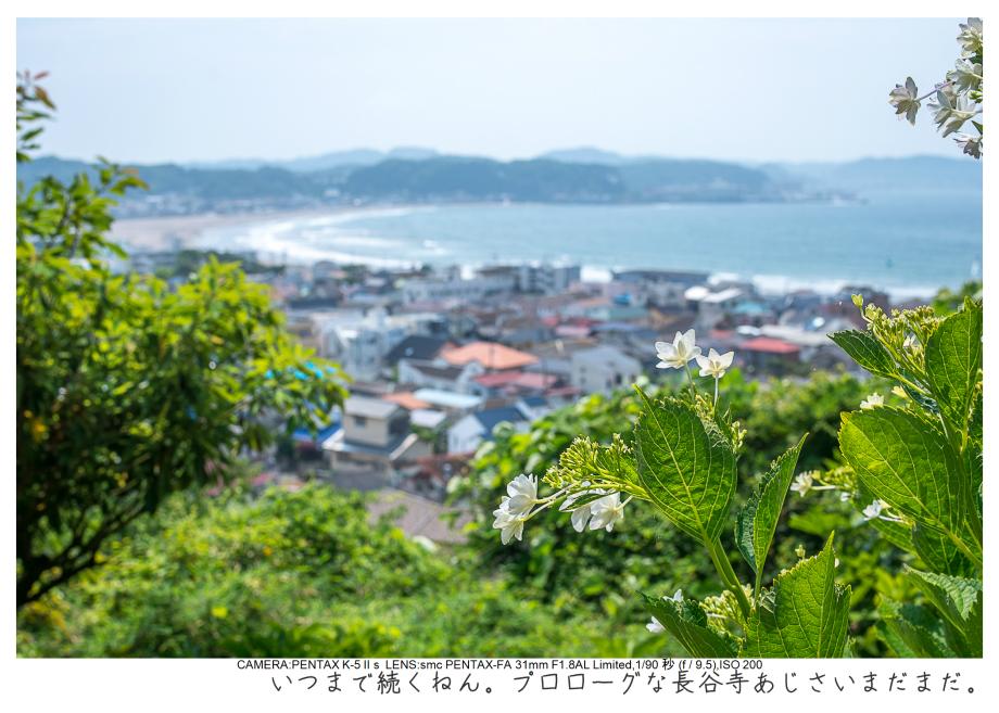 湘南散歩43.jpg