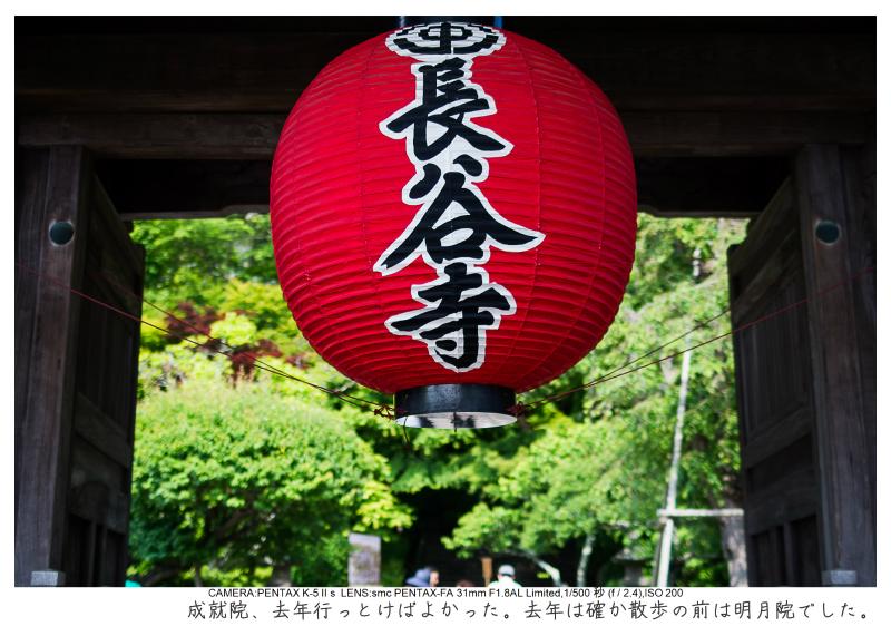 湘南散歩46.jpg