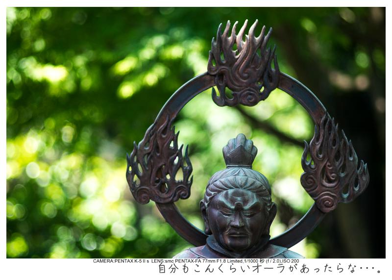 湘南散歩47.jpg
