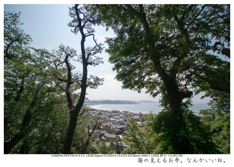湘南散歩52.jpg