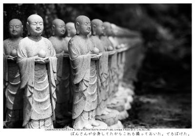 湘南散歩61.jpg