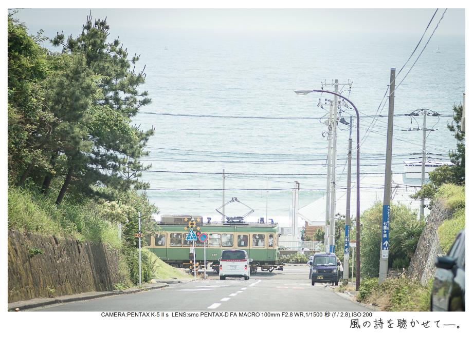 湘南散歩64.jpg