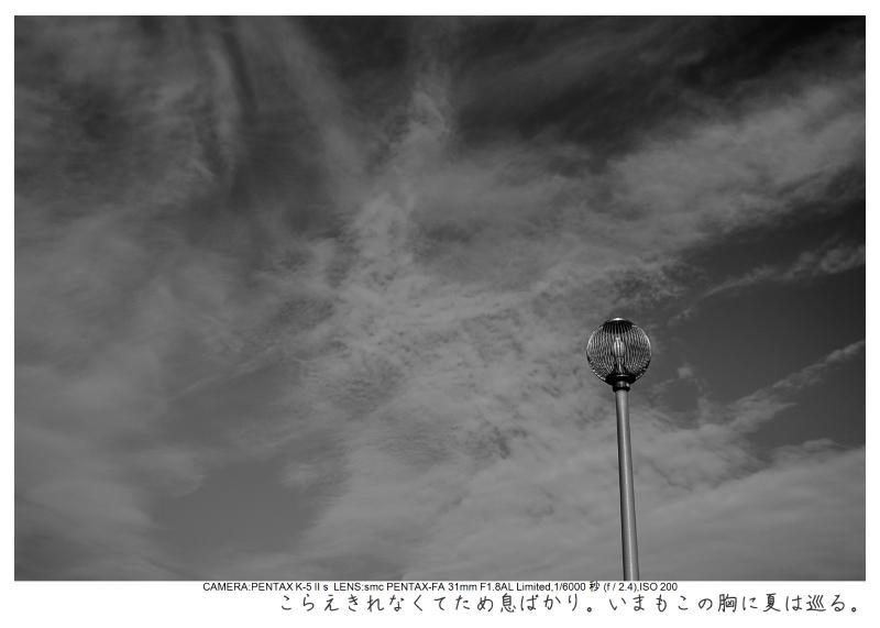 湘南散歩7.jpg