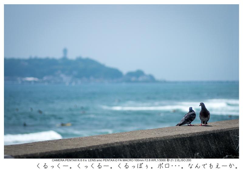 湘南散歩72.jpg