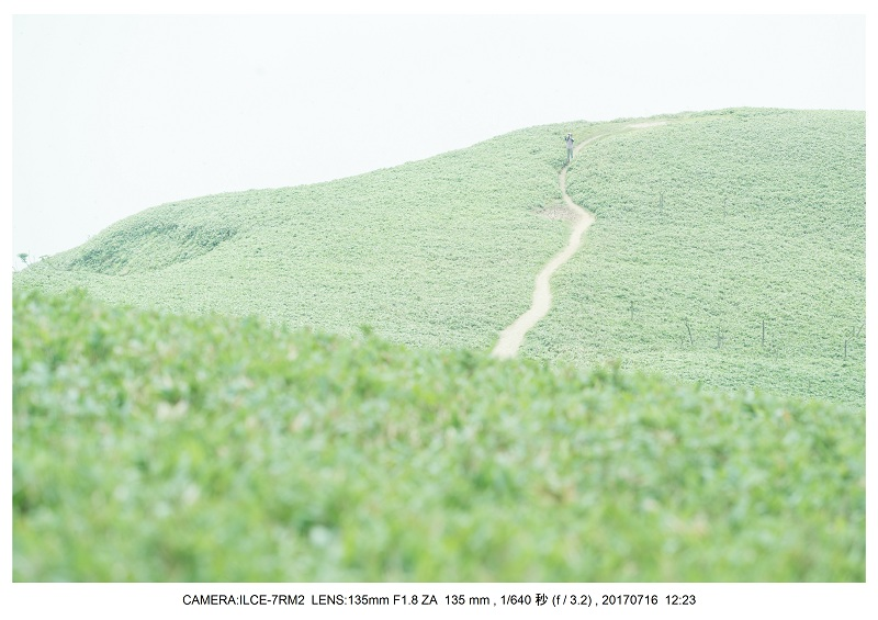 滋賀の絶景・琵琶湖テラス(オールドレンズ Super-Takumar)16.jpg