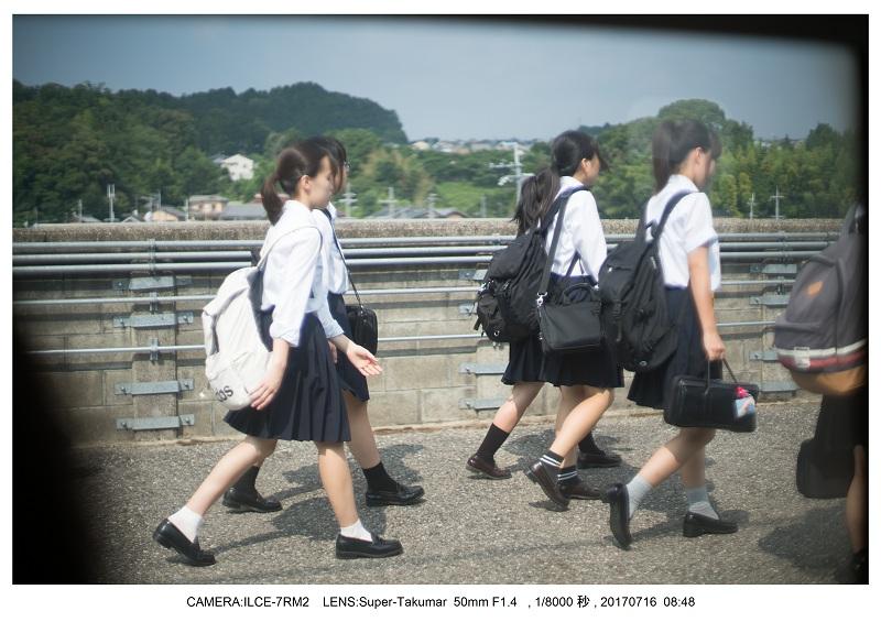 滋賀の絶景・琵琶湖テラス(オールドレンズ Super-Takumar)2.jpg