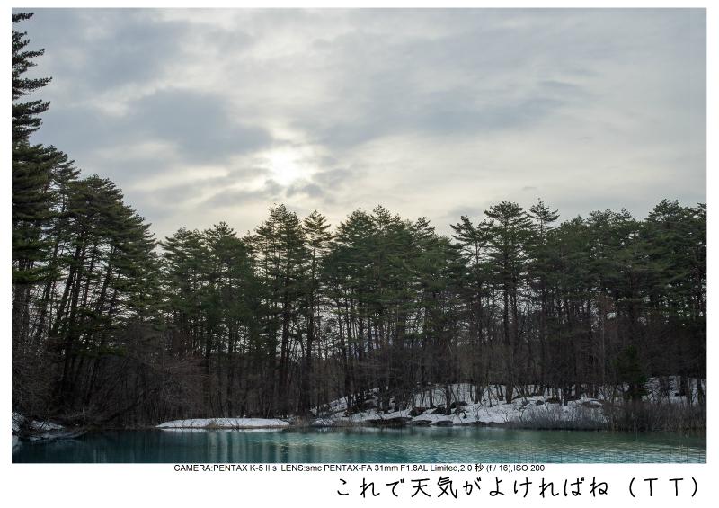 福島桜58裏磐梯.jpg