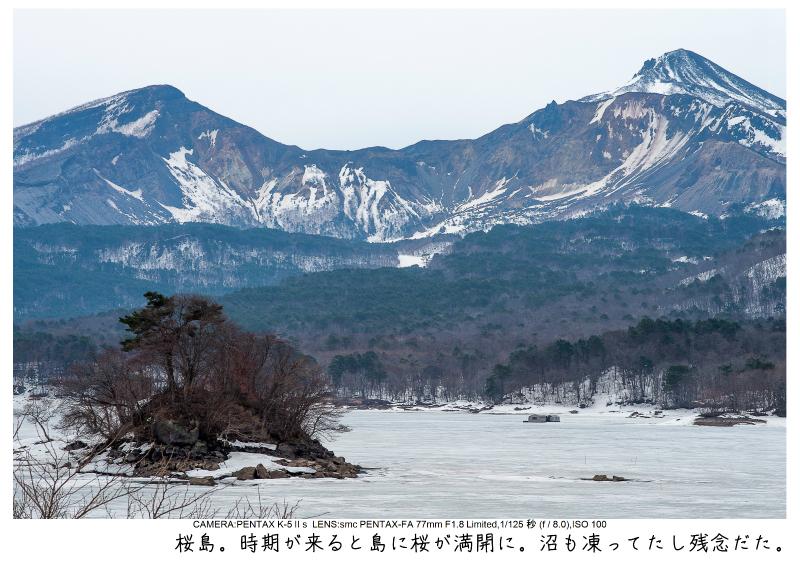 福島桜66裏磐梯.jpg