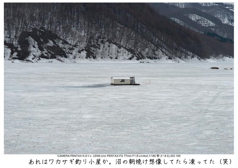 福島桜67裏磐梯.jpg