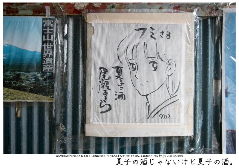 福島桜75裏磐梯.jpg