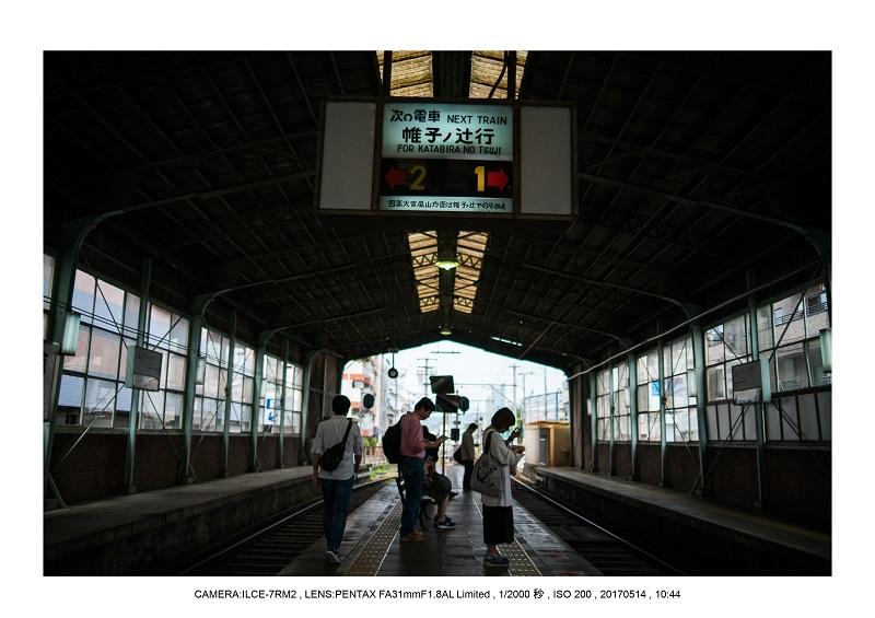 絶景京都・旅行記画像・春の新緑の愛宕念仏寺5月2.jpg