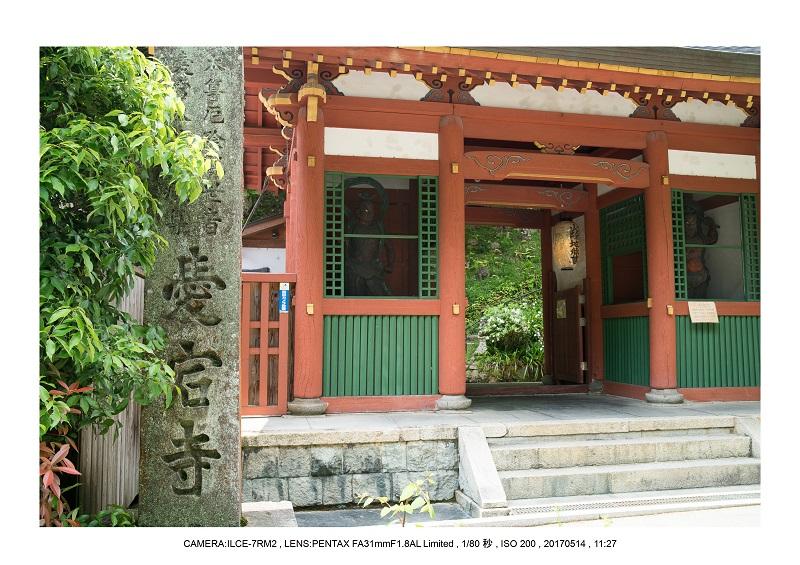 絶景京都・旅行記画像・春の新緑の愛宕念仏寺5月3.jpg