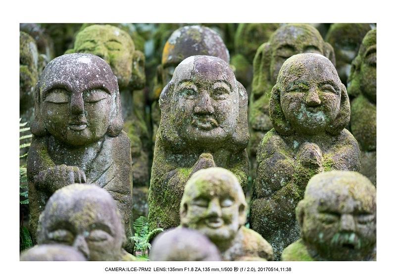 絶景京都・旅行記画像・春の新緑の愛宕念仏寺5月7.jpg